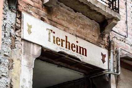 Tierheim