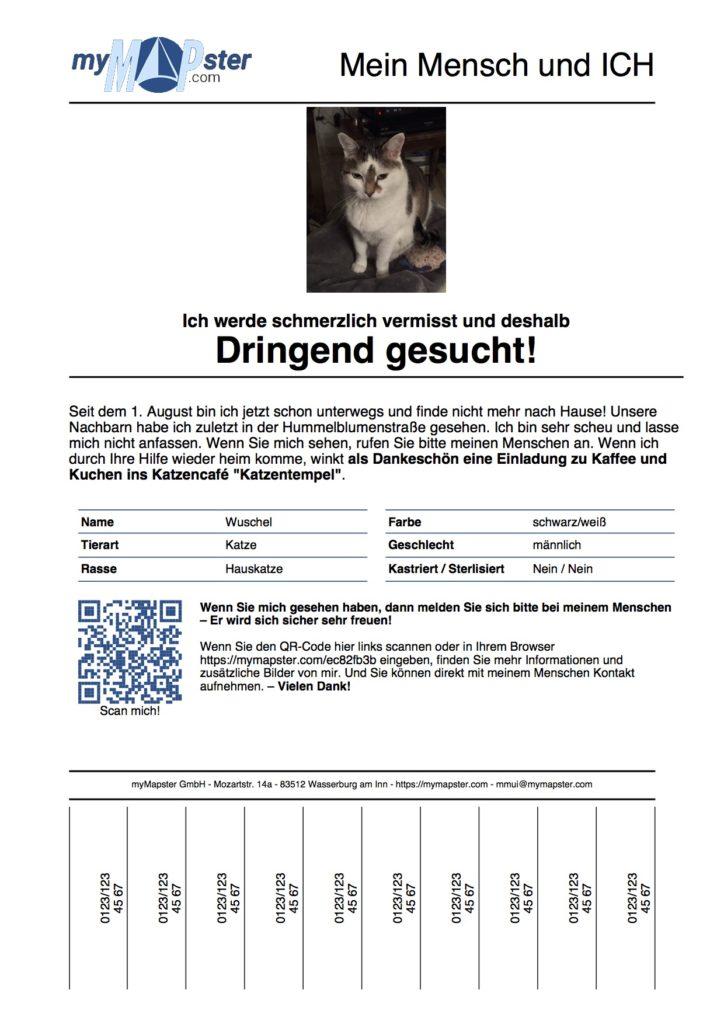 """""""Mein Mensch und ICH"""" - Suchplakat"""