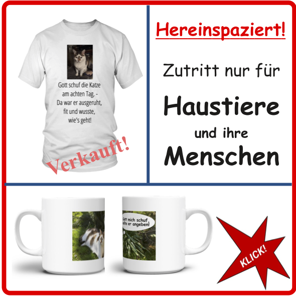 Hereinspaziert! myMapster Online-Shop